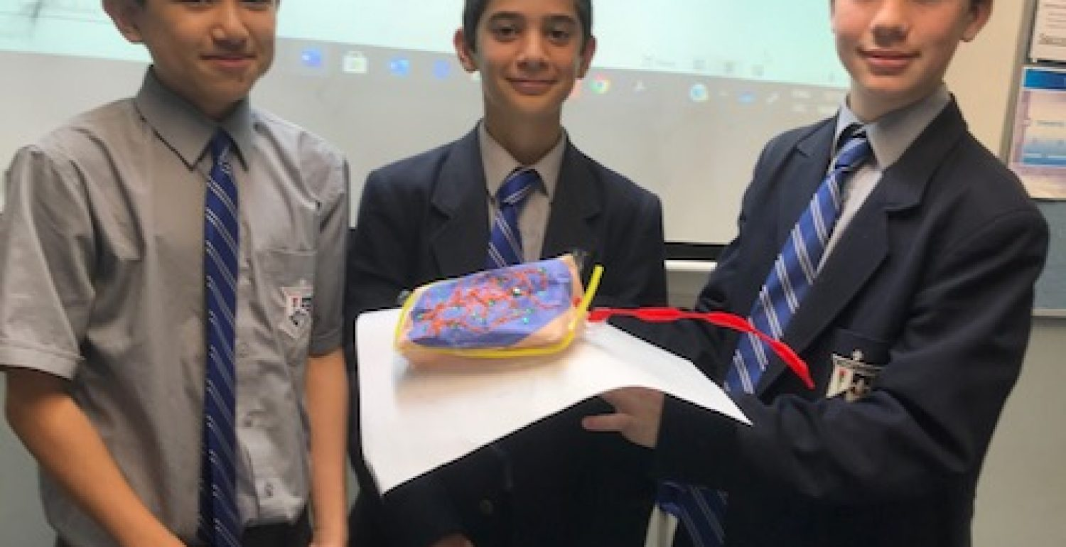 Year 7 Science – Cell Modelling